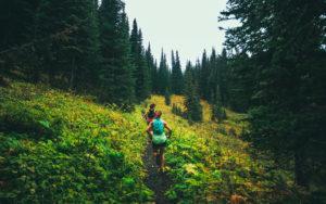 Social Wellness - Wellness Corner Fraser Valley Now